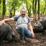 Cochons noirs_48